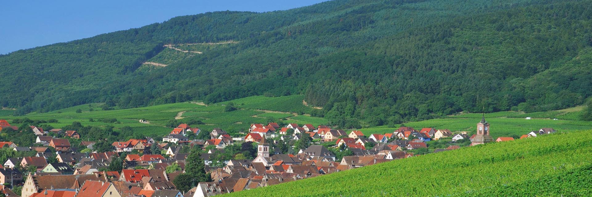 Vakantiehuis Alsace - Grand-Est? Bekijk alle vakantiehuizen