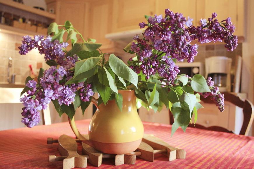 Huur vakantiehuis farinette in vaucluse provence alpes c te d 39 azur in frankrijk - Provencaalse huis gevel ...